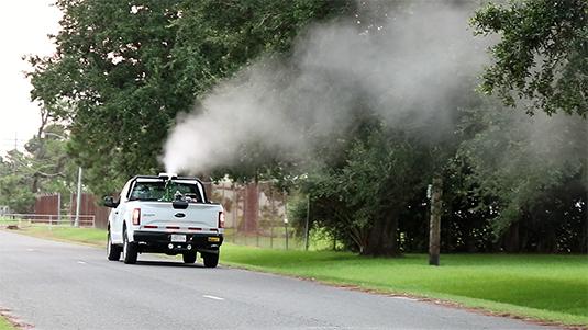Mosquito Populations Explode