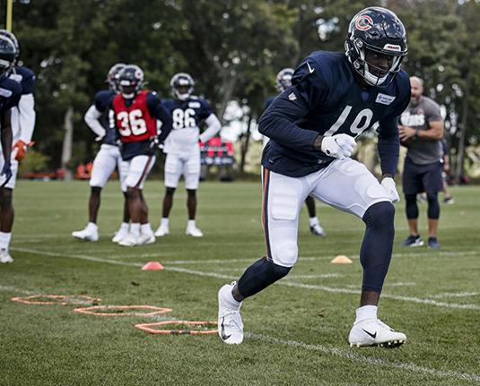Bears Season Preview